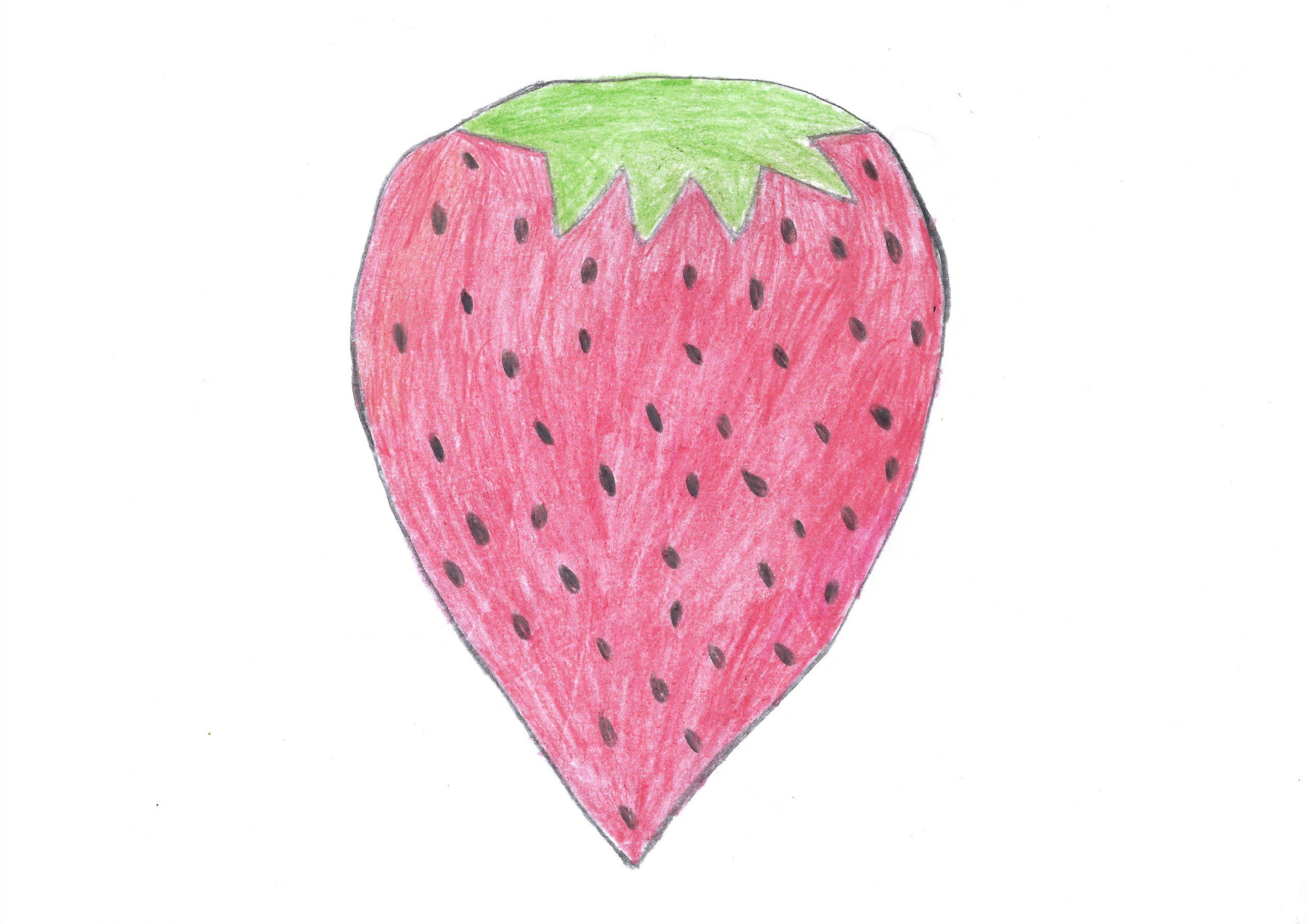 Frutilla — The Strawberry