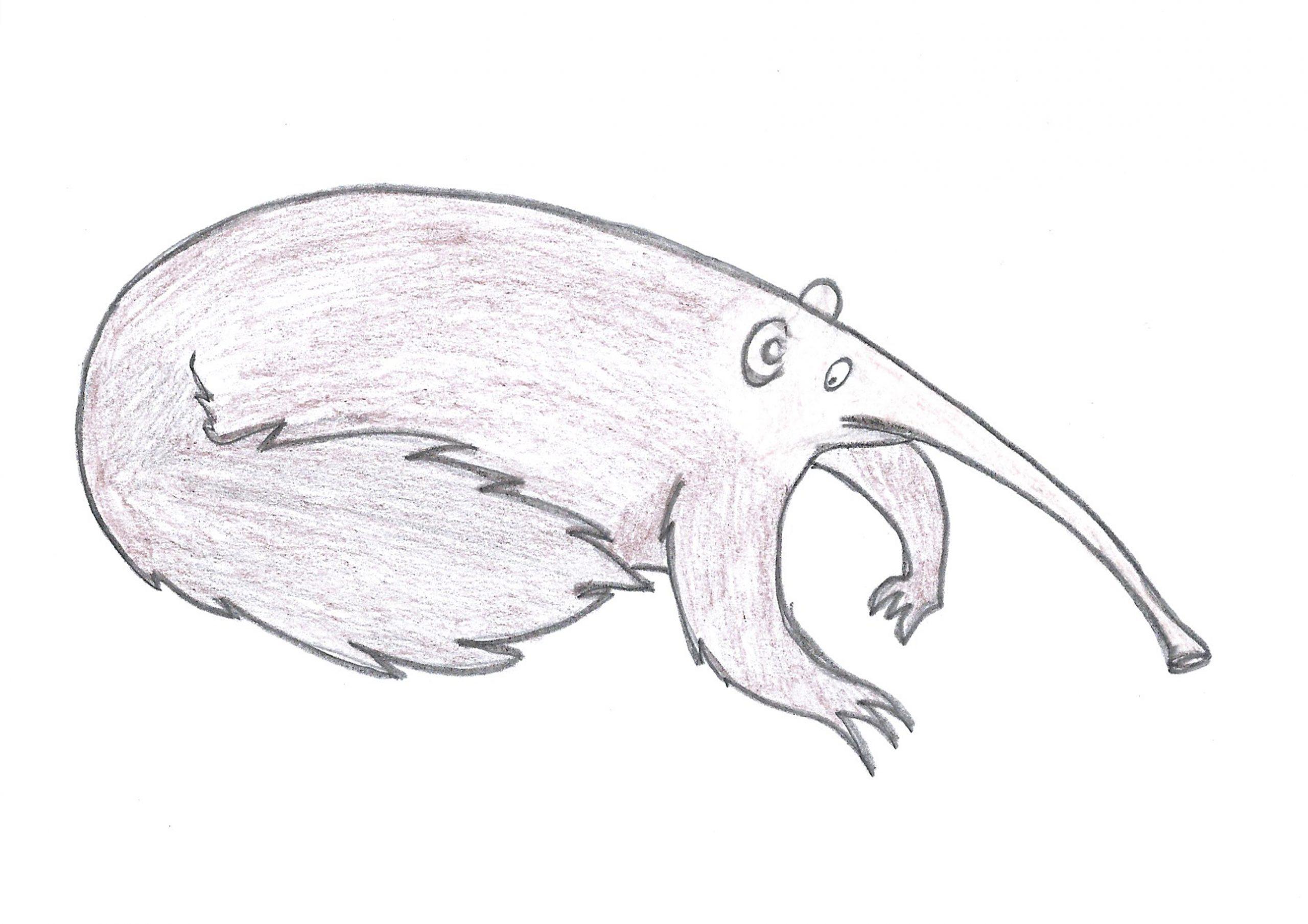 Jurumi — The Anteater