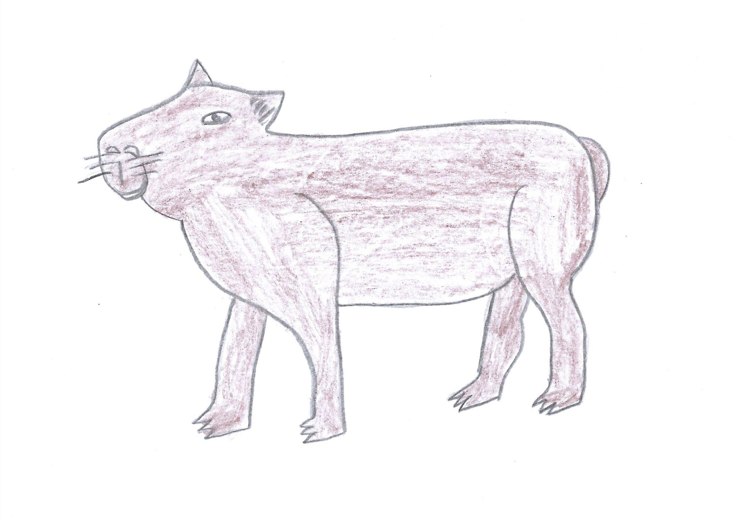 Kapi'yva — The Capybara