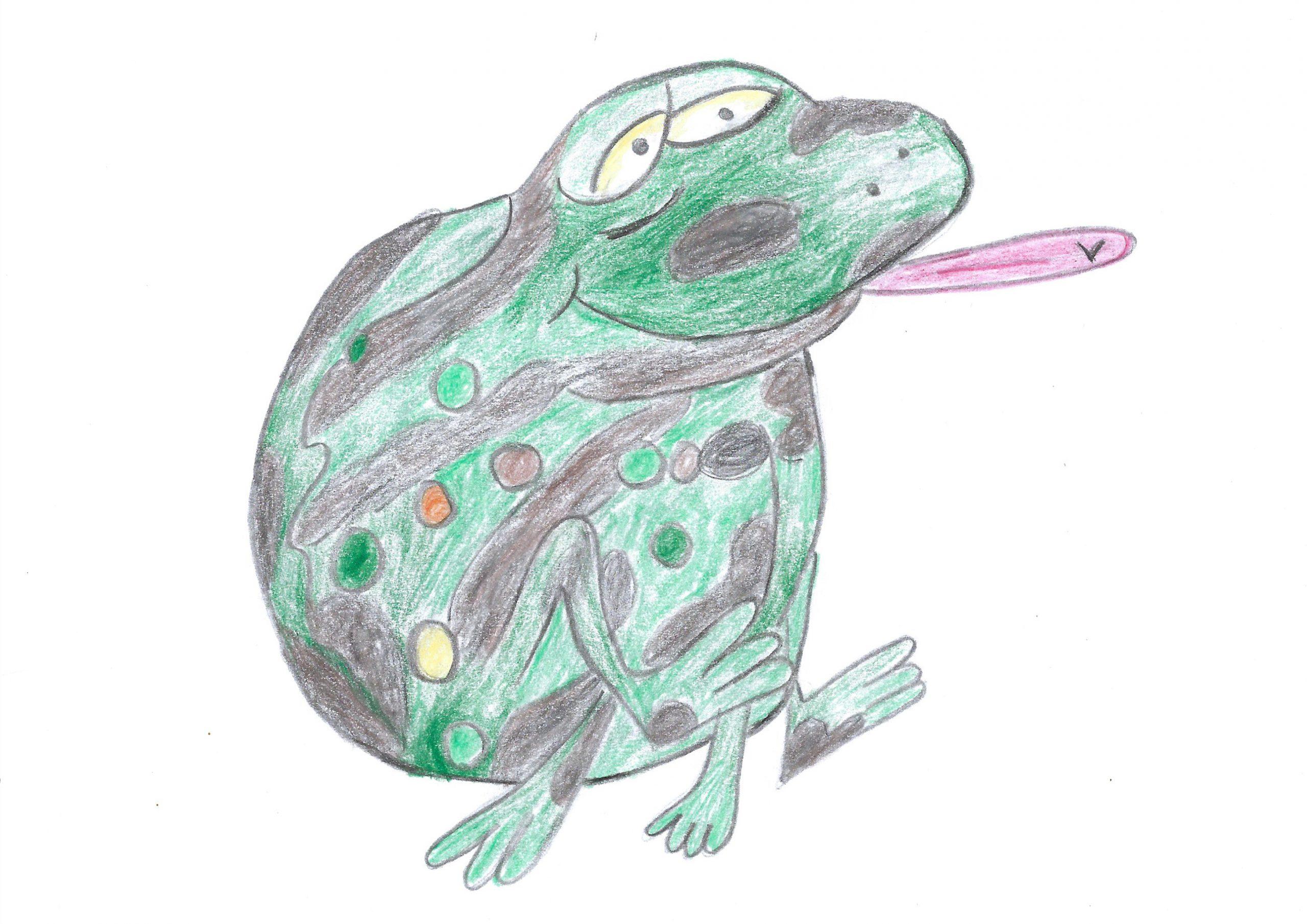 Kururú — The toad