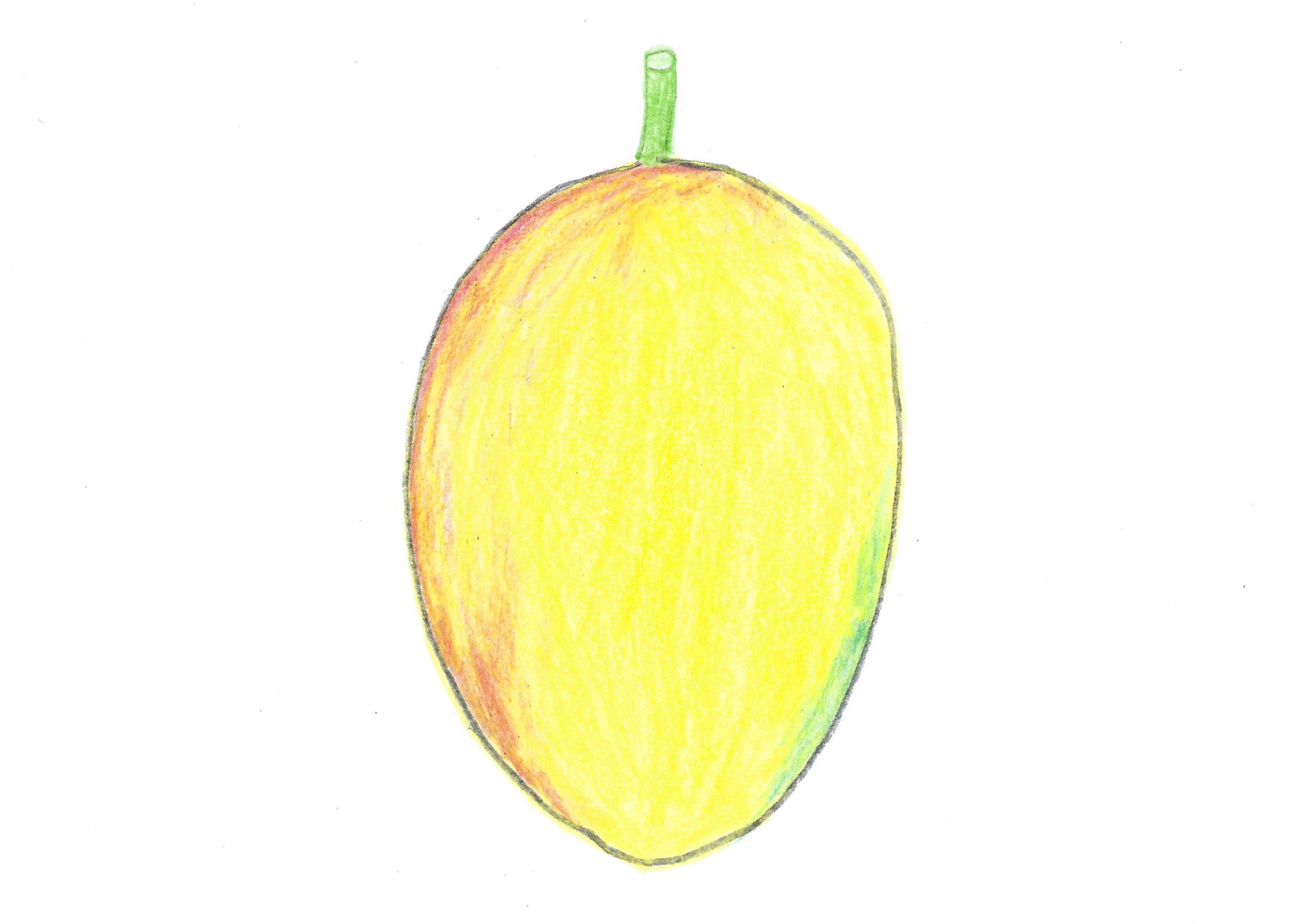 Mango — The mango