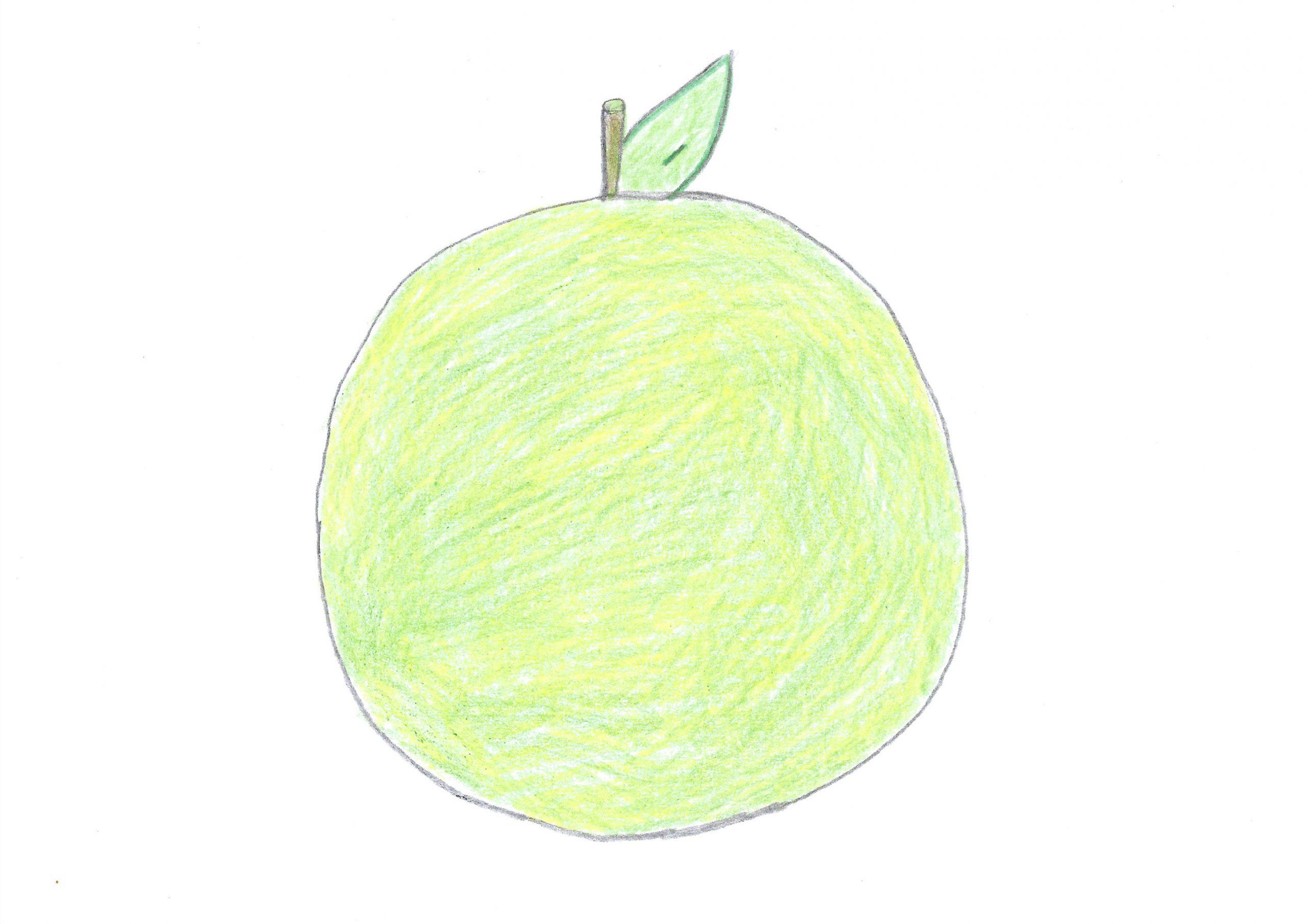 Pomelo — The grapefruit