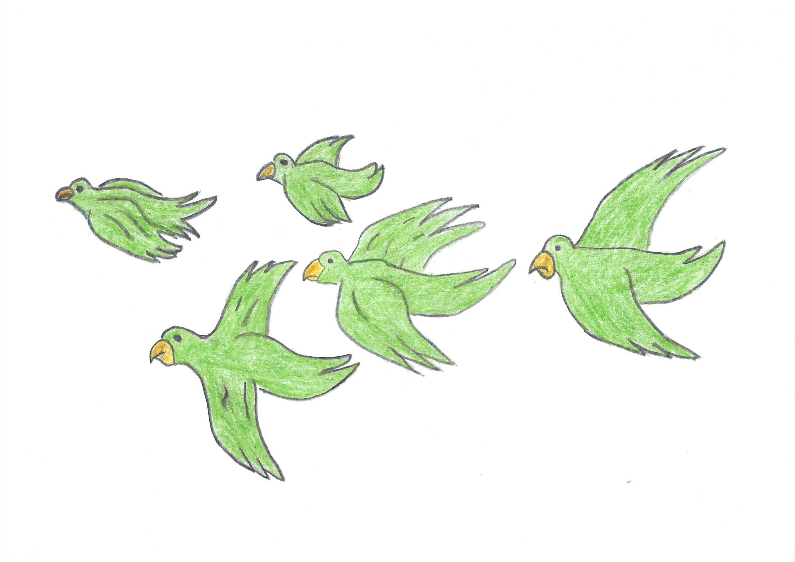 Umi guyra kuera oveve oñondivepa — The birds fly together