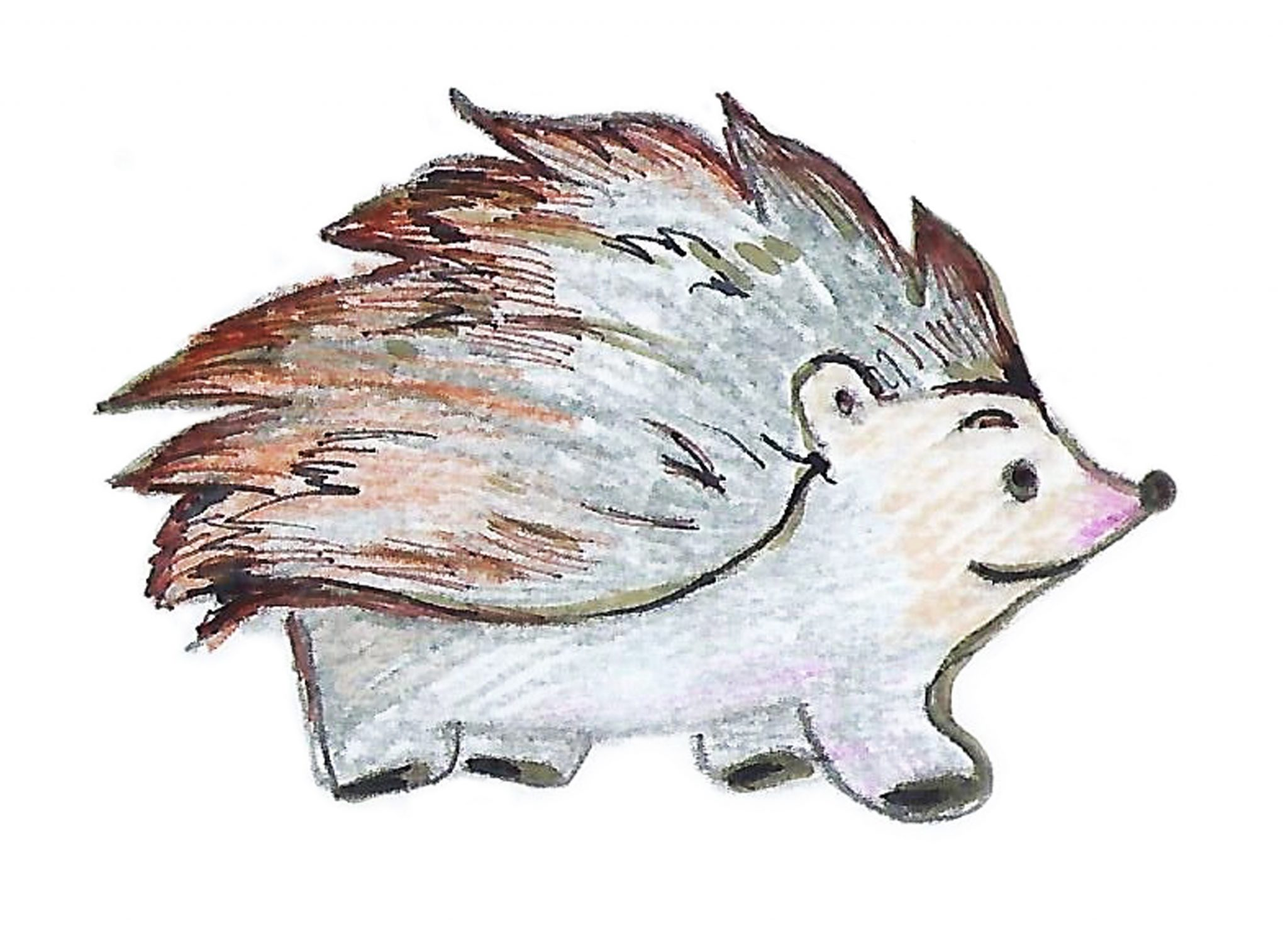 Ёж — Thehedgehog