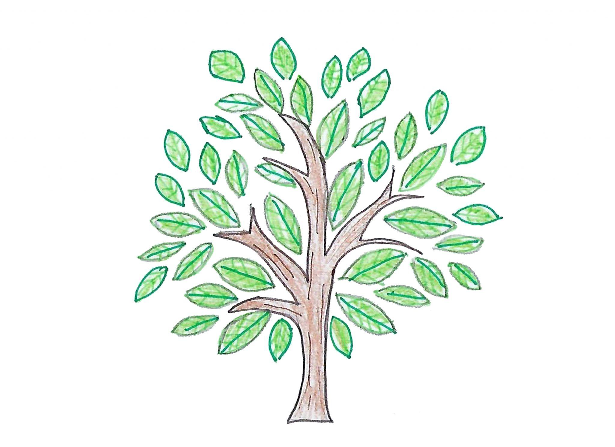 Дерево — Thetree