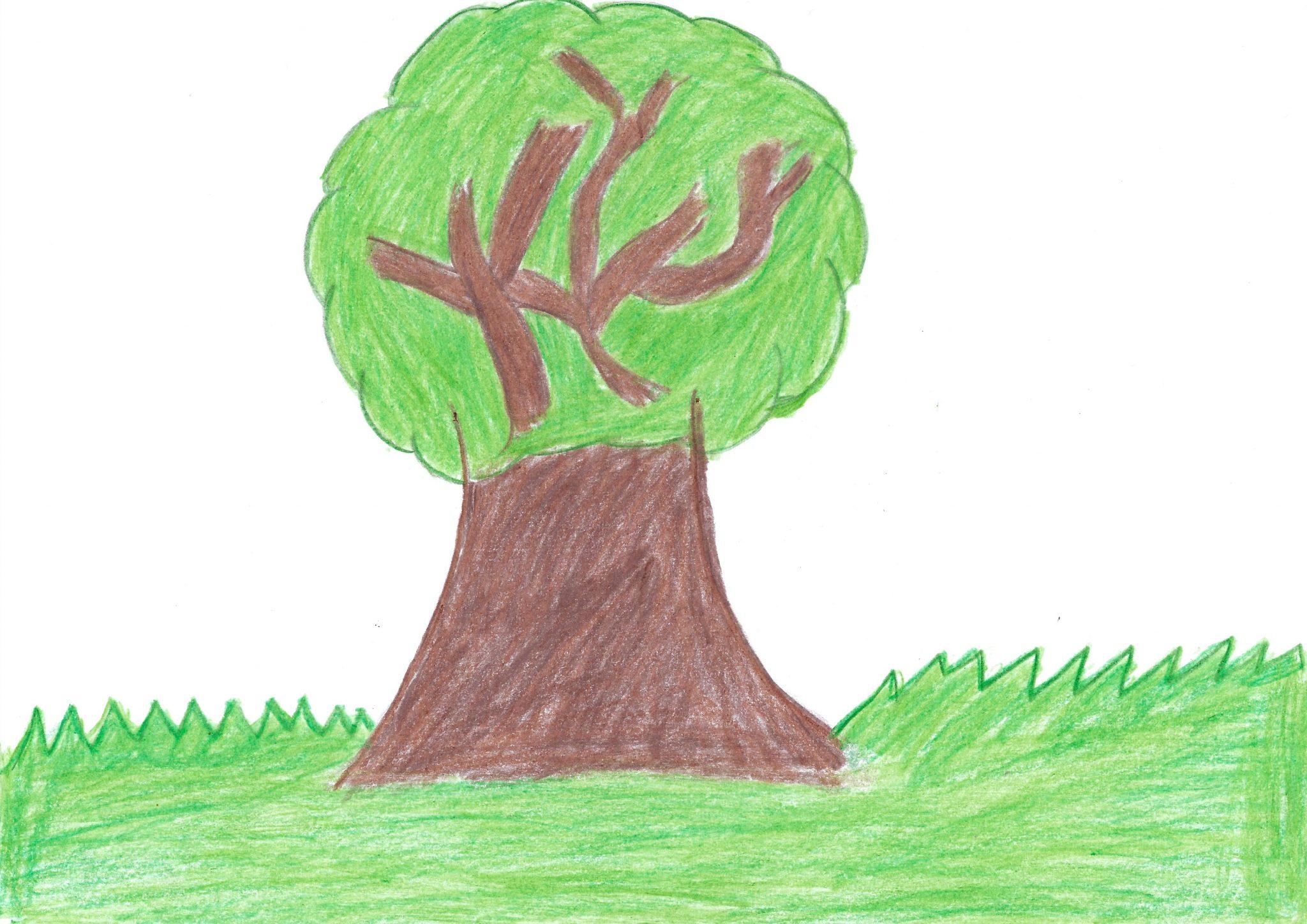 Yvyra — The tree